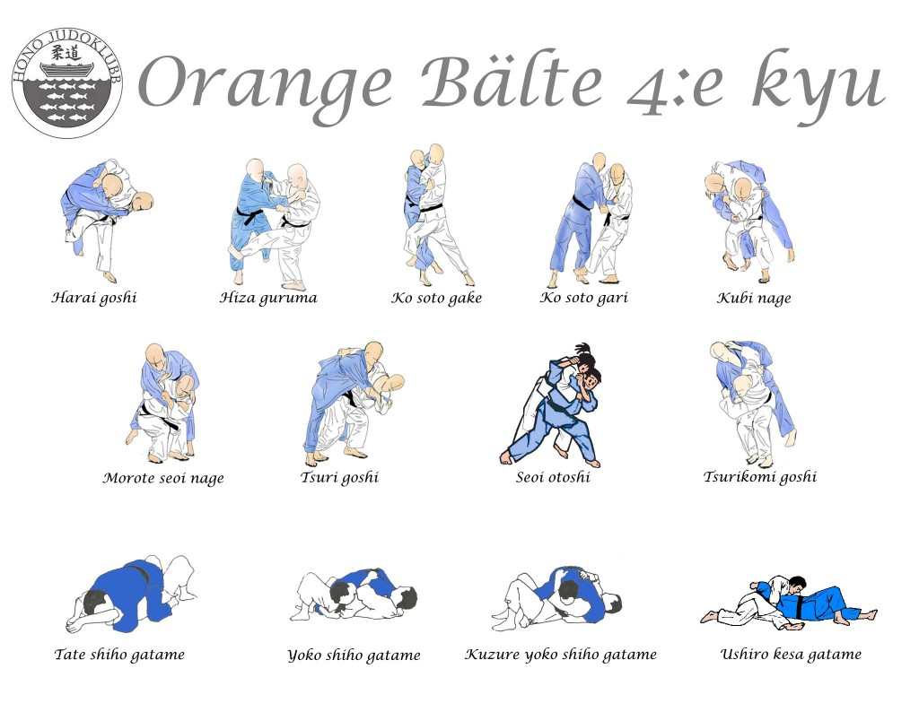 orangebälte